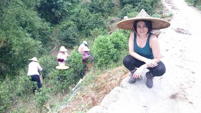 Julia dans des plantations de thé en Chine !