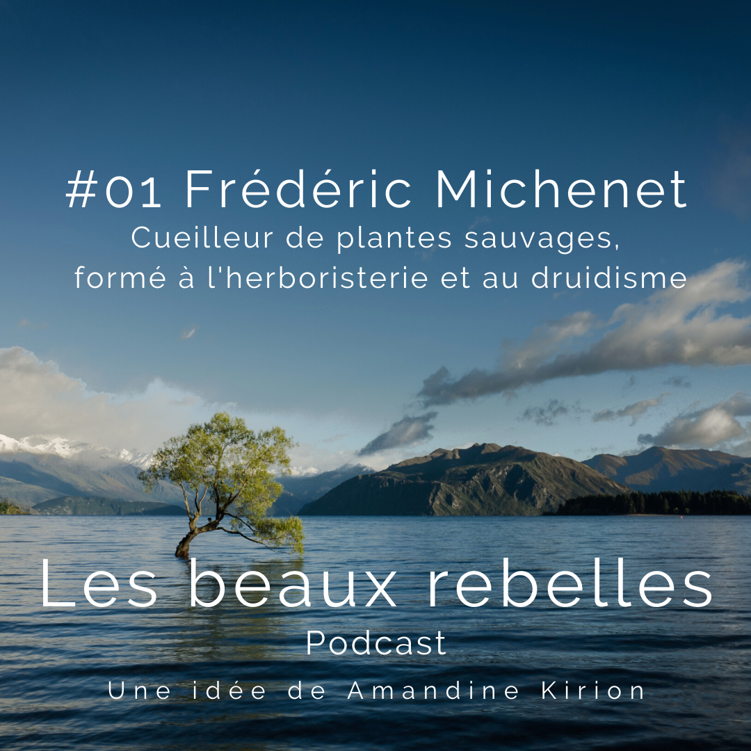 Les beaux rebelles podcast amandine kirion01 frederic michenet